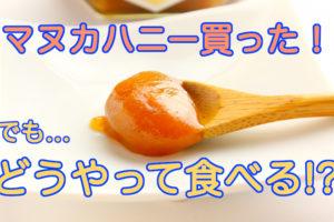 マヌカハニーの食べ方・使い方の記事アイキャッチ