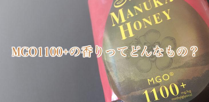 MGO1100+香りバナー