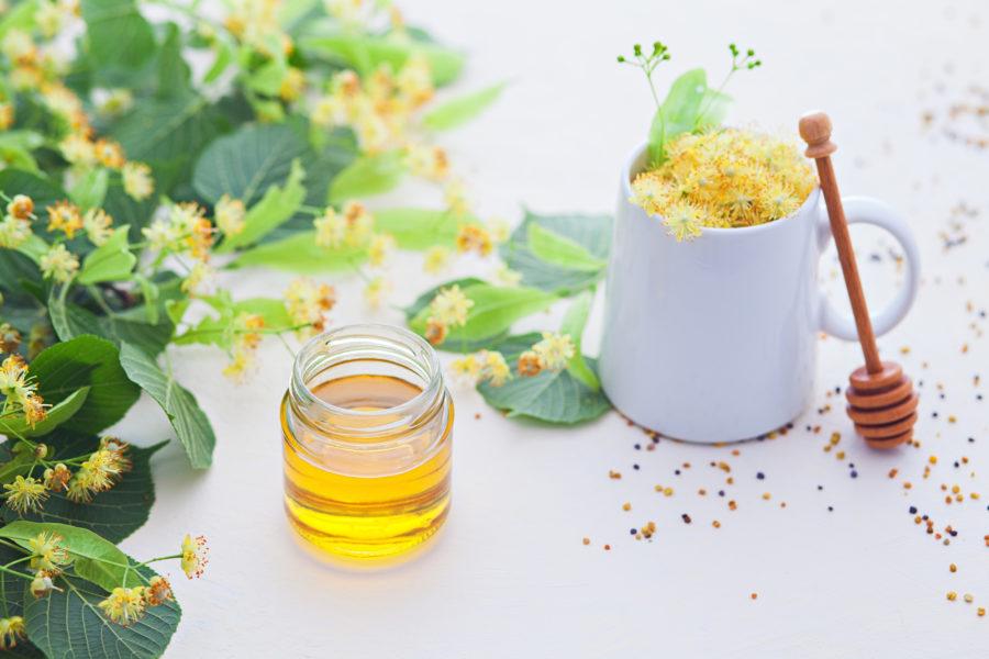 菩提樹(リンデン)ハチミツのイメージ