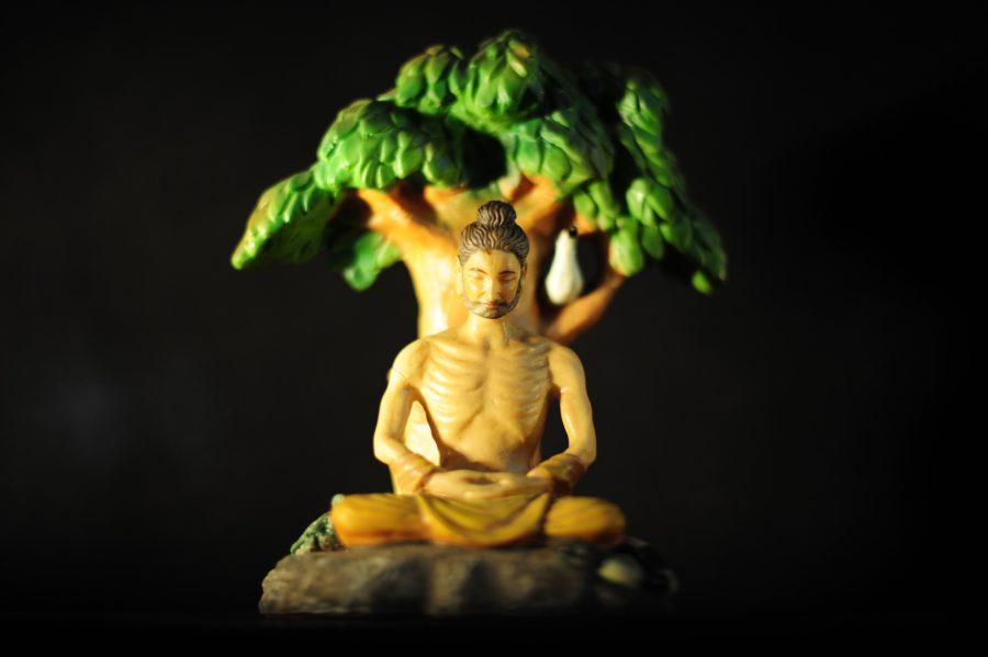 お釈迦様と菩提樹