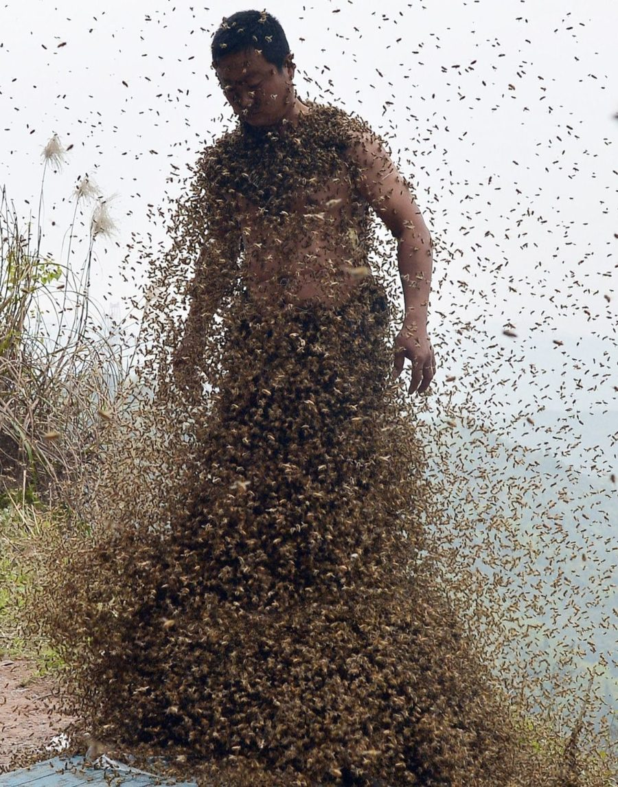 ミツバチが下半身を埋め尽くしている男性