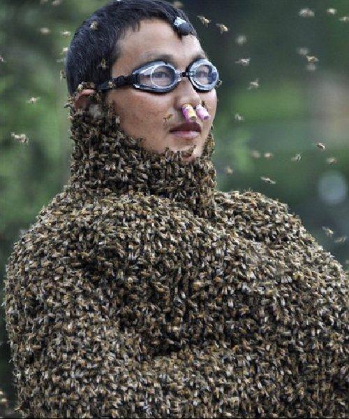 全身びっしりミツバチの中の人