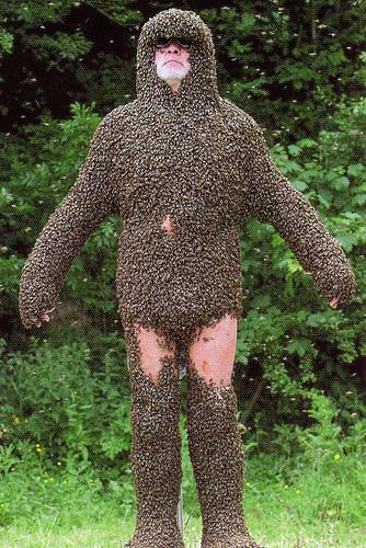 全身にミツバチびっしりのおじいさん