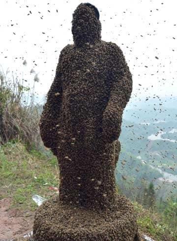 仏像のようにミツバチを纏った男性