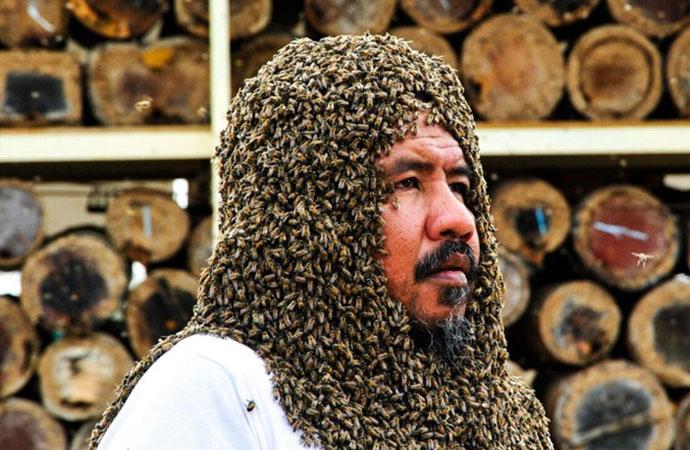 サウジアラビアのようなミツバチおじさん